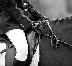 DRESSAGE - America's Clothes Horse