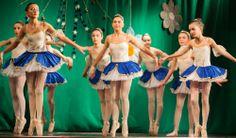 Gala de Nadal 2013 - Grau 5è.