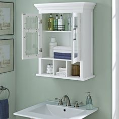 wyndenhall hayes two door bathroom wall cabinet with cubbies in white