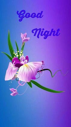 Good Night Friends Images, Good Night My Friend, Good Night Love Images, Good Night Messages, Good Night Quotes, Good Morning Images, Good Night Funny, Good Night Image, Good Morning Good Night
