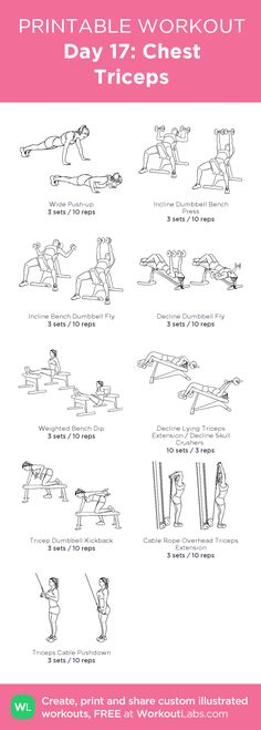 Day 17: Chest Triceps