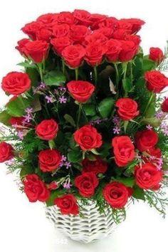 arreglos florales feliz aniversario ramos de rosas rojas mensajes ustedes flores preciosas rosas hermosas adornos belleza