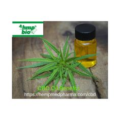 Have You Tried CBD Oil? SAFE  LEGAL LIFE CHANGING THE MOST POWERFUL & POTENT HEMP PRODUCTS ON MARKET — #HEMPMEDPHARMA Benefits: Pain Reliever, Antidepressant, Alleviate Cancer Symptoms #hempoil #cbdoil #ozonatedoil #ozonatedhempoil #Romania Oil Safe, Have You Tried, Hemp Oil, Life Changing, Romania, Cancer, Herbs, Plants, Products