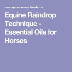 Equine Raindrop Technique - Essential Oils for Horses
