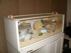 IKEA Billy Roborovski Hamster Cage by Flutteri, via Flickr