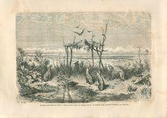 Landscape Desert Aborigine burial place Australia Australie GRAVURE PRINT 1860 | eBay Vintage World Maps, Art Prints, Poster Prints, Wall Art, Art, Heritage Image, Landscape Prints, Vintage, Etching