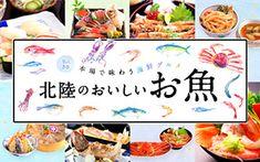 【特集】本場で味わう海鮮グルメ 北陸のおいしいお魚