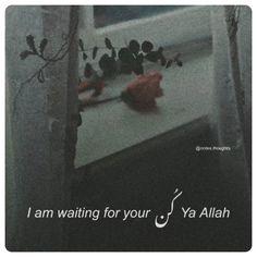 Sufi Quotes, Allah Quotes, Peace Quotes, Poem Quotes, Urdu Quotes, Islamic Love Quotes, Islamic Inspirational Quotes, English Speaking Book, 1 Line Quotes