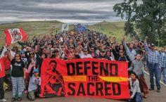 Susan Sarandon: This Is How We Can Defeat Dakota Access Pipeline