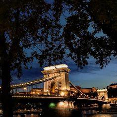 "62 aprecieri, 1 comentarii - Ana •CREATIVE POSTS• (@solnitacuvise) pe Instagram: ""Lumini într-o toamnă rece. #bridge #budapest #hungary #night #europe #view #trip #travel…"" Tower Bridge, Budapest, Creative, Instagram Posts, Travel, Scenery, Viajes, Destinations, Traveling"