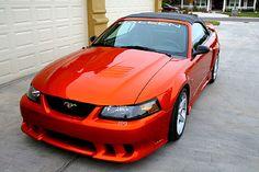 Saleen Mustang, 2001 Ford Mustang, Mustang Cobra, Vintage Mustang, Mustang Convertible, Coyotes, Mustangs, My Ride, Hot Cars