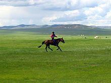 Steppe - Wikipedia, the free encyclopedia