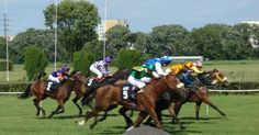 HORSE RACES in Warsaw have long and rich tradition and have always been bringing attention of lots of people. It is one of the typical old-school Warsaw things to do and a perfect way to spend a fun ...