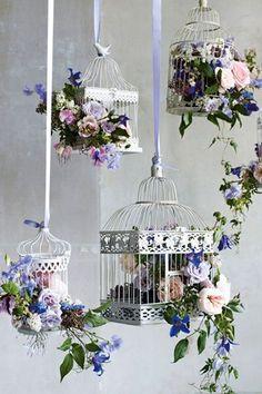 gaiolas e flores