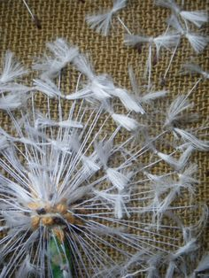 dandelion detail. ripped silk floss and variety of threads and embellishments.