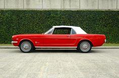 1964.5 Mustang Convertible
