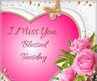 I miss you Blessed Tuesday Beautiful Flowers Images, Flower Images, Good Morning Picture, Morning Pictures, Happy Valentines Day Pictures, Tuesday Pictures, Good Morning Facebook, Blessed Quotes, Tumblr Image