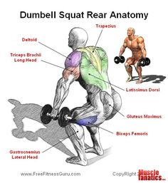 I love squats Shoulder Training, Leg Training, Muscle Training, Weight Training, Dumbbell Workout, Squat Exercise, Gym Workout Tips, Fitness Workout For Women, Legs