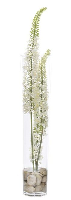 Natural Decorations, Inc. - Eremurus White |  Glass
