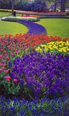Keukenhof Gardens ~ Lisse, Holland.