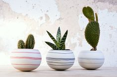 "wapastudio: ""Cheerful porcelain mini cactus planters. A vivid mini planters collection with colorful inlay stripes. Handmade by WaPa Studio www.wapa.etsy.com """