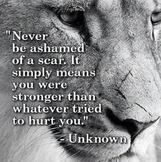 trendy quotes about strength in hard times cancer motivation Citation Lion, Citation Force, Image Citation, Lion Quotes, Me Quotes, Motivational Quotes, Inspirational Quotes, Loyalty Quotes, Scar Quotes