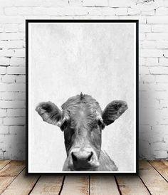 Cow Print Cow Photo Printable Art Cow Art Farm by honeytreeprints
