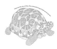 Turtle ~ Millie Marotta