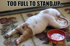 Too full to stand up