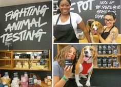 Shop With These 20 Companies And You'll Be Giving Back To Dogs