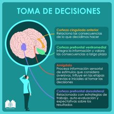 Physical Education Games, Science Education, Kids Education, Learning Psychology, Psychology Notes, Trauma, Bussines Ideas, Brain Memory, Human Body Unit