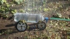 amazing what you can do with an old roller skate and a plastic water bottle