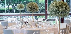 The experience and dedication needed to make your wedding the ceremony of your dreams. Hotels And Resorts, Wedding Venues, Weddings, Table Decorations, Amp, Home Decor, Wedding Reception Venues, Wedding Places, Decoration Home