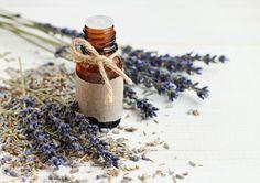 Les mauvaises odeurs dans la cuisine vous font la vie dure? Voici 5 solutions vraiment facile pour les éradiquer!