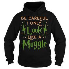Potter Wizard Harry.