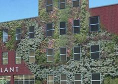 From Meat Packing Plant to 93,500 s.f. Off-Grid Vertical Farm and Brewery