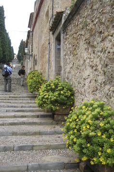 Mallorca - steps in Pollensa