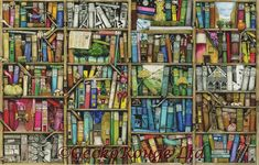 bookshelf-by-colin-thompson-cross-stitch-kit-large-kit-fabric-count-28-count-dmc-evenweave-1x1-14989-p.jpg (1117×714)