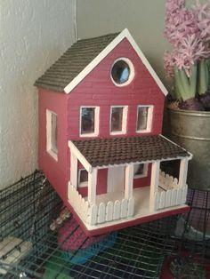 Little rat house
