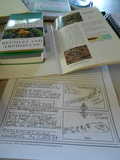 Handbook of Nature Study: Focusing on Reptiles - AO Nature Study rotation for Autumn 2015 Science Art, Science Nature, Charlotte Mason, Nature Journal, Nature Study, Reptiles And Amphibians, Learning Activities, Education, Online Homeschooling