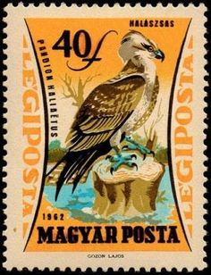 Postage Stamp Design, Postage Stamps, Old Stamps, Some Image, Hungary, Art Pieces, Birds, Animals, Public Domain