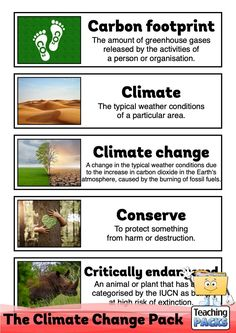 Learn about climate change, its effects and what we can do to help, with our enormous teaching pack. It includes topic guides, a video introduction, printable activity resources and display materials.