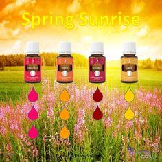 Spring Sunrise Diffuser Blend