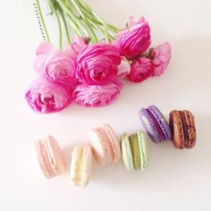 macarons and flowers - Google zoeken