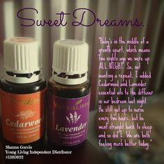 Young Living's cedarwood and lavender essential oils combined in a diffuser promote restful sleep...   Shanna Garcia Young Living Independent Distributor #1360622