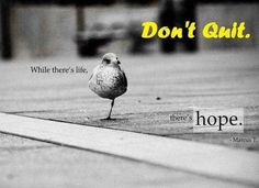 dont quit