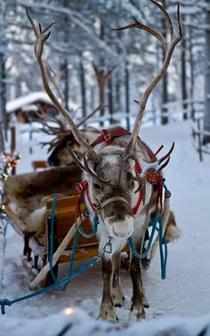 Santa Claus Village,