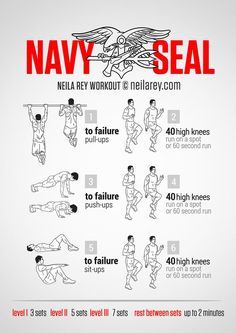 Navy Seal Training - Military Fitness Exercises - Train Like a Seal Fitness Workouts, Gym Workout Tips, Ab Workout At Home, At Home Workouts, Workout Plans, Exercise Plans, 300 Workout, Hiit Workouts For Men, Step Workout