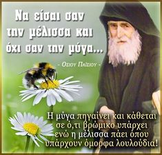 Orthodox Anthology: Be the Bee and not the Fly -Saint Paisios- Fly Quotes, Greek Alphabet, Christian Messages, Spiritual Messages, Orthodox Christianity, Faith Hope Love, Christian Life, Saints, Bee
