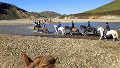 Íshestar- Iceland Horse Riding Vacations - Equitrekking